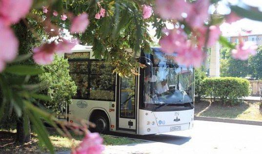 Новые сезонные маршруты запустят в Сочи с 1 июня