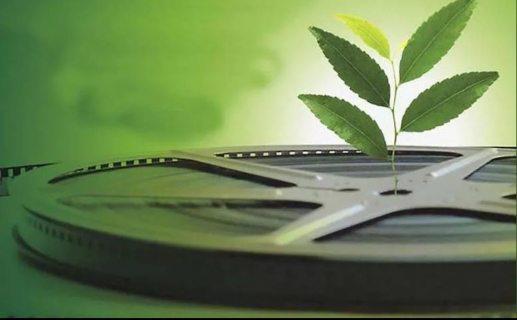 Первый фестиваль зеленого кино начался  в Сочи